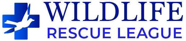 Wildlife Rescue League