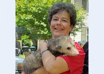 Rehabilitators, Our Unsung Heroes: Karen Brace